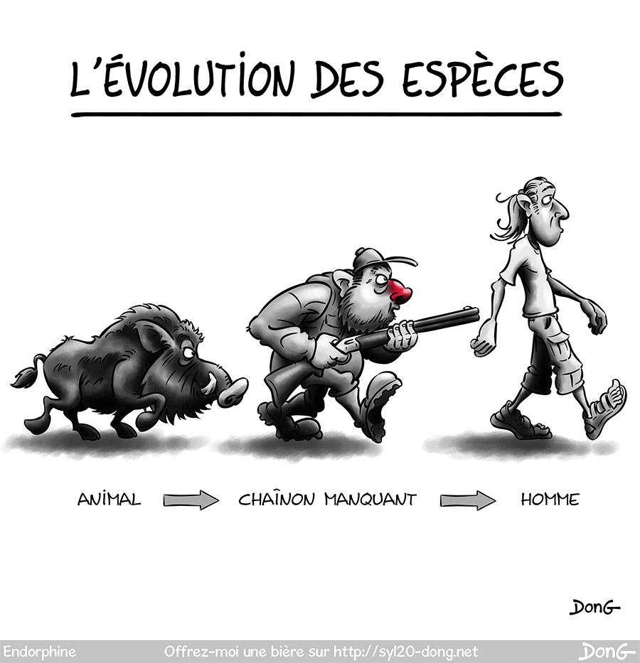 Évolution des espèces